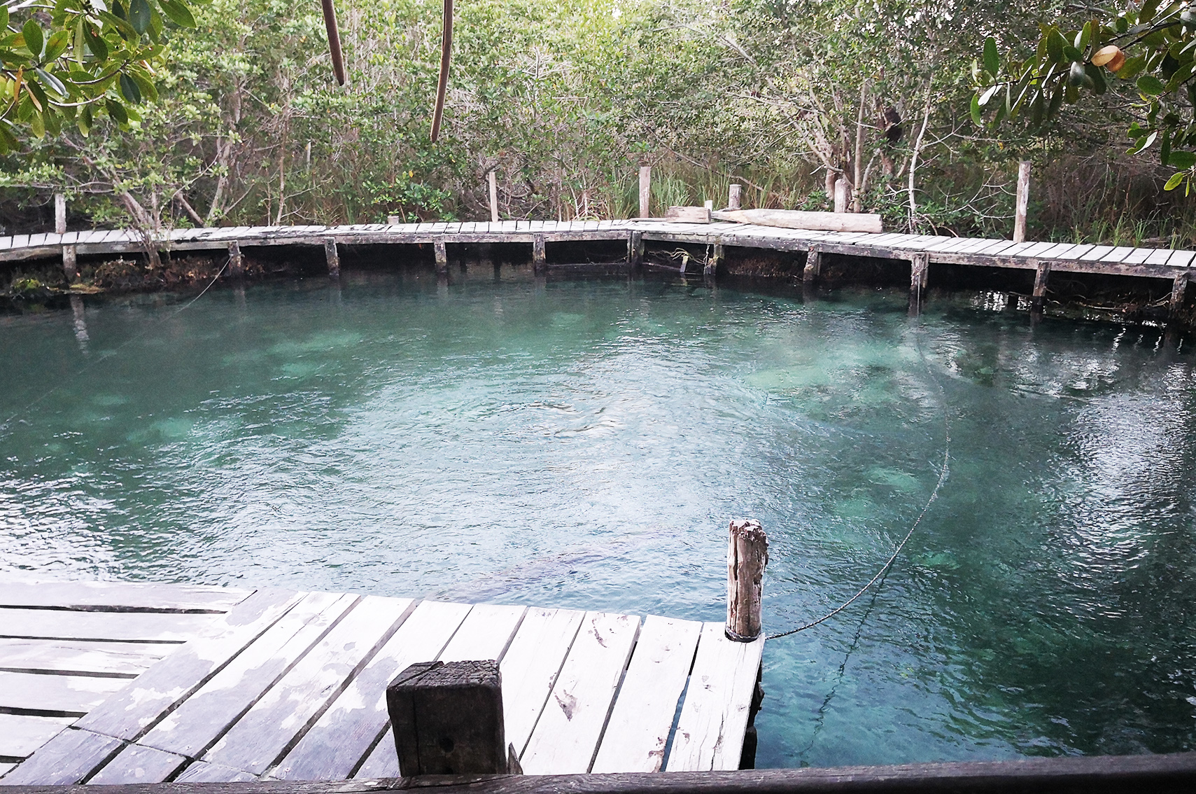 Ou aller au Mexique : Holbox, Yalahau