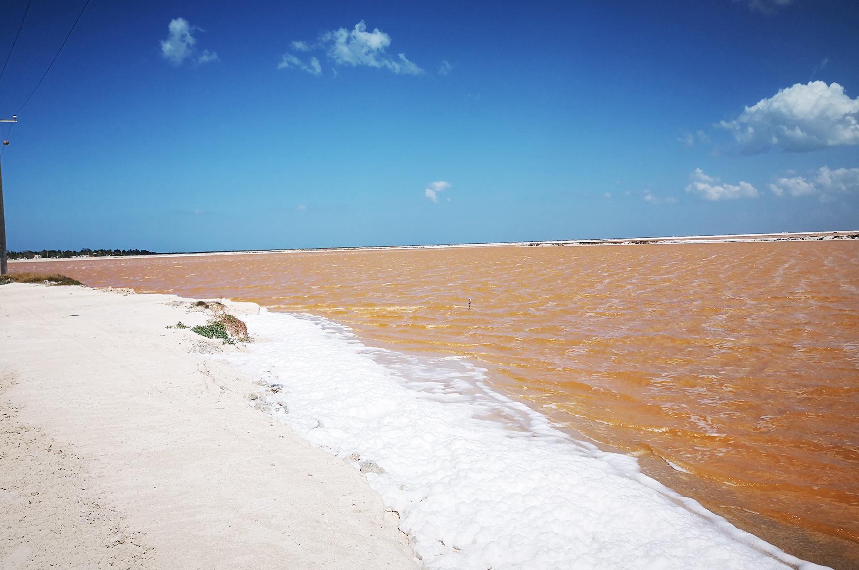 Ou aller au mexique : Las coloradas, Rio lagartos, Yucatan