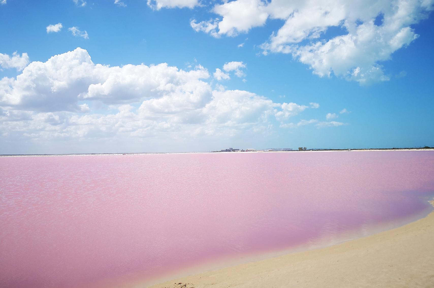 Voyage au mexique conseils : Las coloradas, Rio lagartos, Yucatan